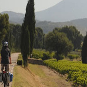 Cycling and hiking - bed and breakfast - luberon - vaucluse - la bastide des dreamses