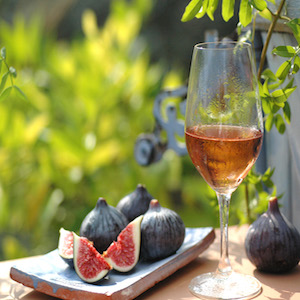 Wine tasting - bed and breakfast - luberon - vaucluse - la bastide des dreamses