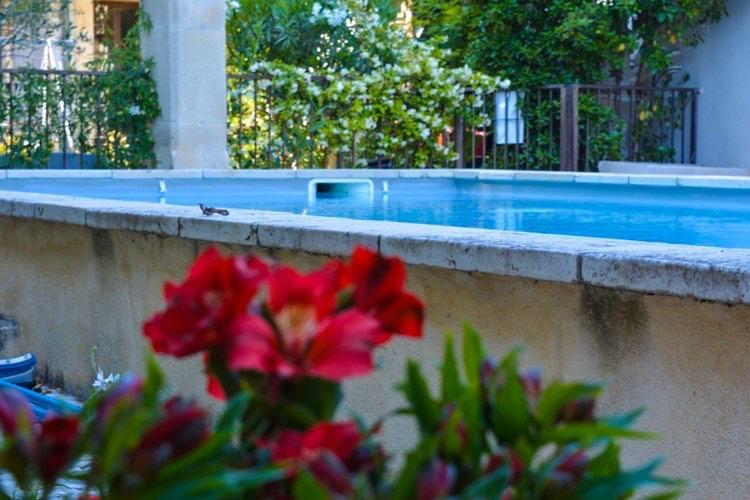 la bastide des songes - chambre hotes - luberon - provence - gordes - roussillon - isle sur sorgue - piscine - fleurs