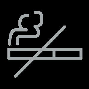 pictogramme cigarette - png